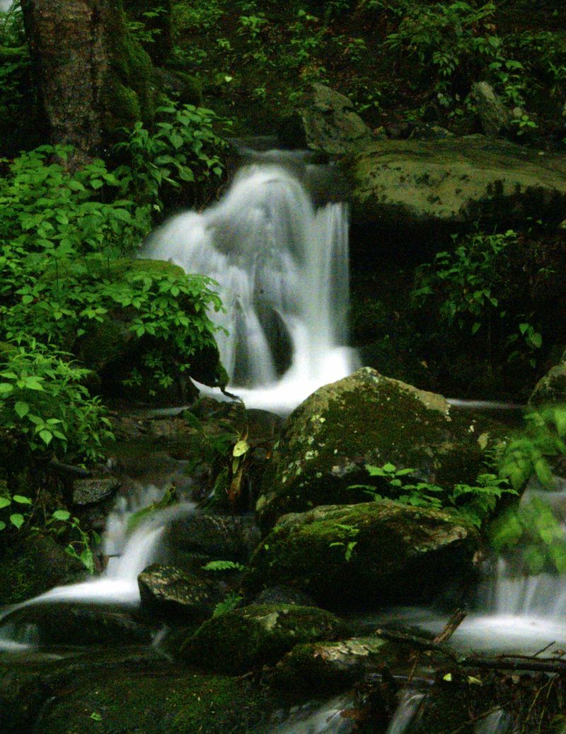 Smoky Mountain National Park 164