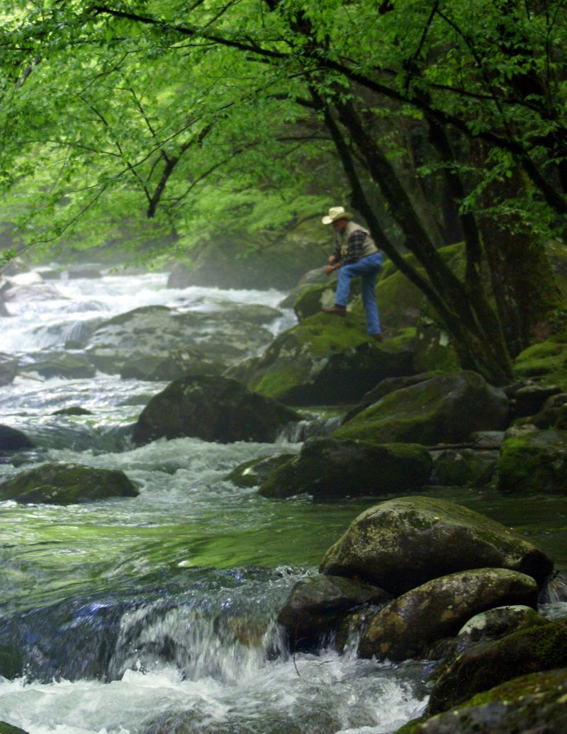 Smoky Mountain National Park 138