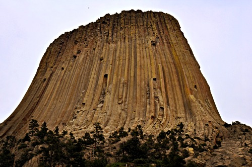 Devils Tower 2 low res